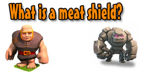 What is a meat shield?